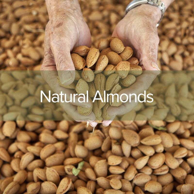 natural-almonds3